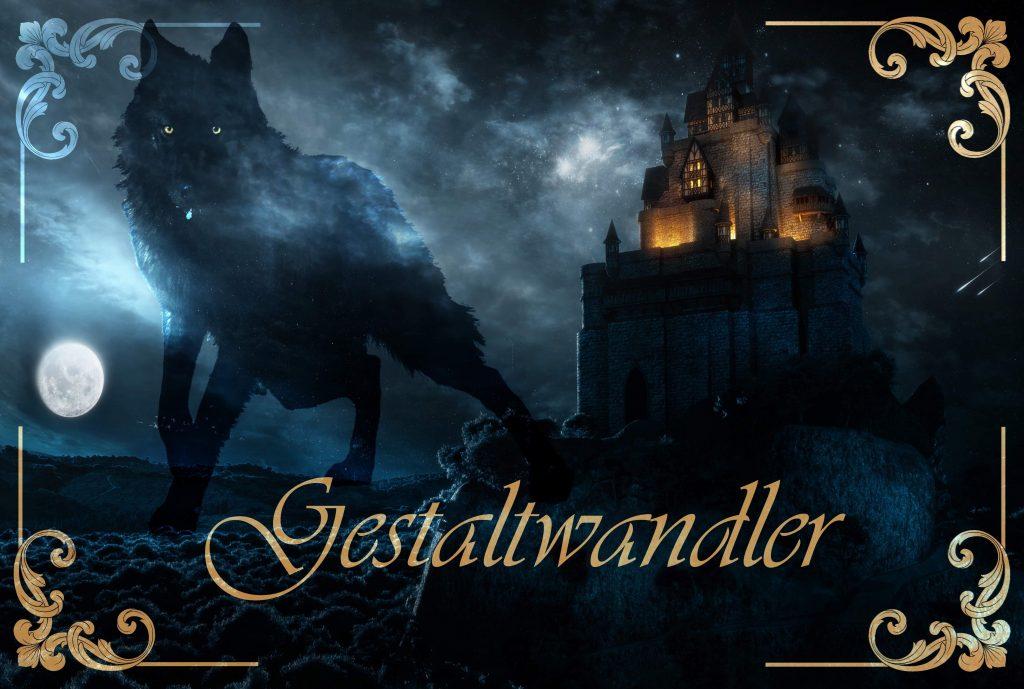 03-Gestaltwandler